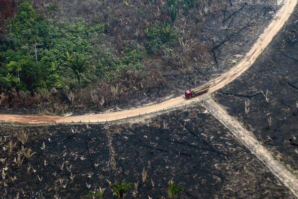 Вид сверху на сгоревший лес Амазонии - Sputnik Беларусь