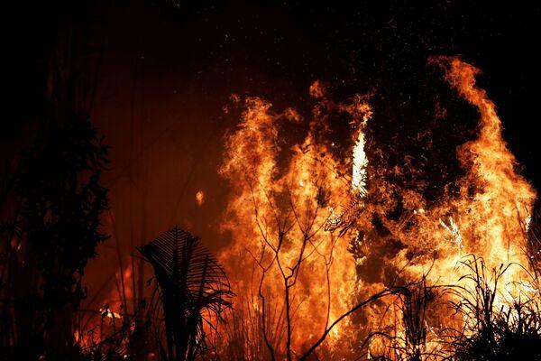 Пожары в бразильской Амазонии - Sputnik Беларусь