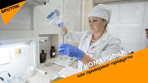 Комаровка: как проверяют продукты. - Sputnik Беларусь