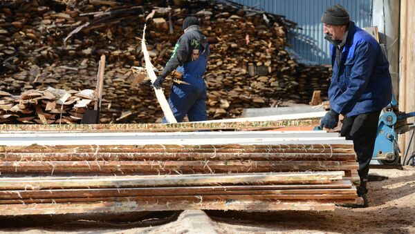 Заготовка леса - Sputnik Беларусь
