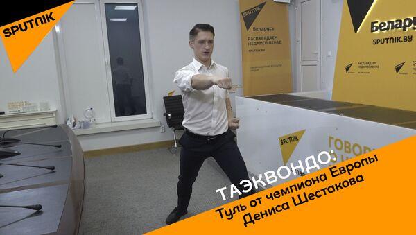 Чемпион Европы Денис Шестаков продемонстрировал комплекс атакующих и защитных движений. - Sputnik Беларусь