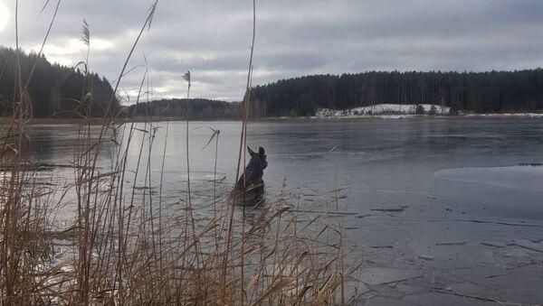 Лось провалился под лед в Смолевичском районе - Sputnik Беларусь