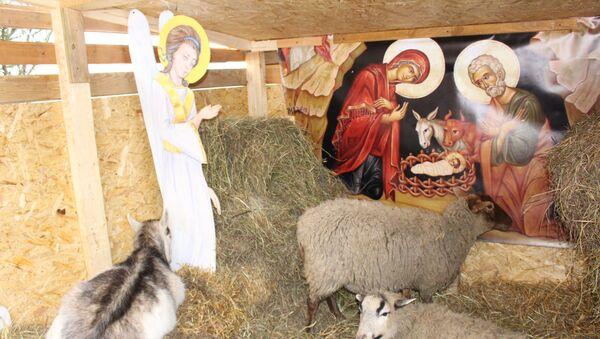 Живой вертеп открылся около Коложской церкви в Гродно - Sputnik Беларусь