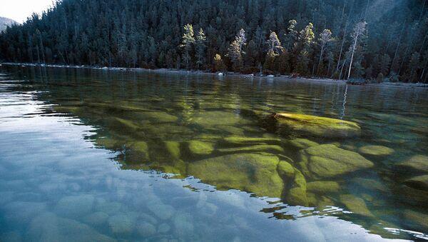 Озеро Байкал. Баргузинский заповедник - Sputnik Беларусь