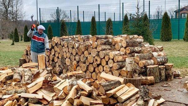 Александр Лукашенко колет дрова на родине, в Александрии - Sputnik Беларусь
