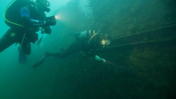 Подводный мир - Sputnik Беларусь