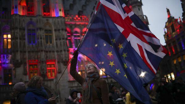 Накануне в Брюсселе прошел митинг с призывом к британцам не покидать Евросоюз - Sputnik Беларусь