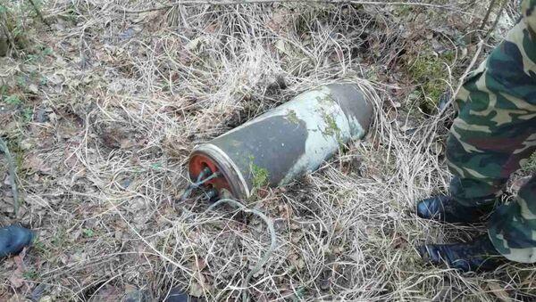Найденная в лесу бомба - Sputnik Беларусь