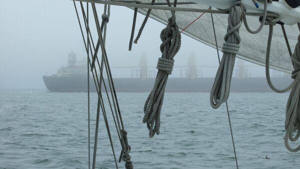 Силуэт судна, архивное фото - Sputnik Беларусь