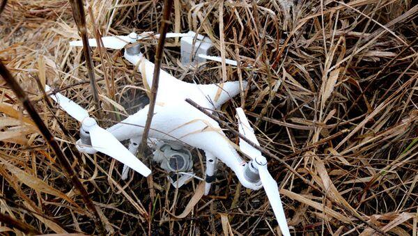 Найденный дрон - Sputnik Беларусь