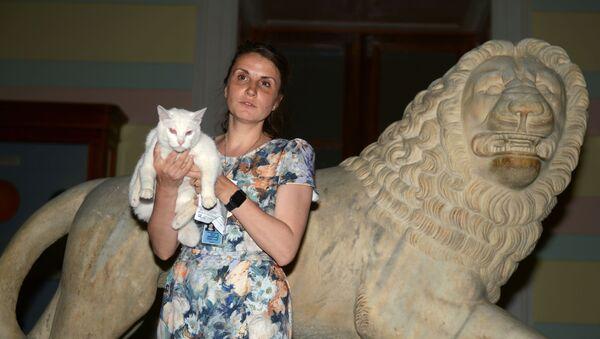 Ветеринарный врач Эрмитажа Анна Кондратьева и кот-оракул Ахилл - Sputnik Беларусь