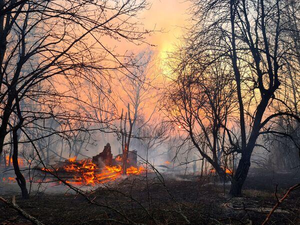 Пожар неподалеку от села Раговка - Sputnik Беларусь
