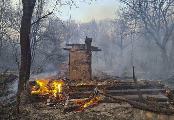 Пожар в зоне отчуждения Чернобыльской АЭС  - Sputnik Беларусь