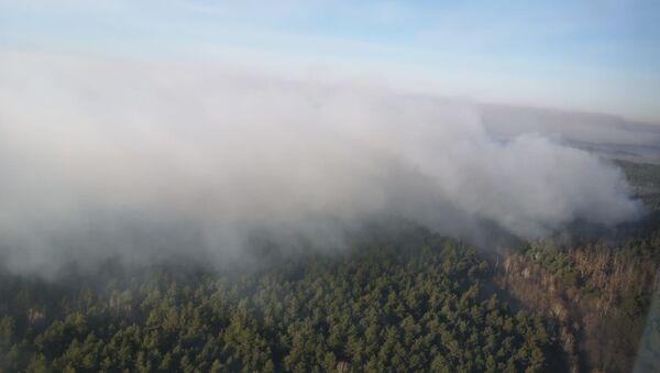 Лесной пожар в зоне отчуждения Чернобыльской АЭС - Sputnik Беларусь