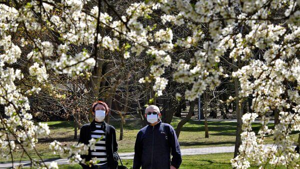 Мужчина и женщина в защитных масках возле цветущего дерева в парке Челюскинцев в Минске - Sputnik Беларусь
