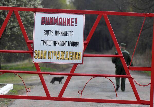 Каждый год в отселенные деревни тридцатикилометровой зоны около Чернобыля в Радуницу разрешено посещение кладбищ без пропуска - Sputnik Беларусь
