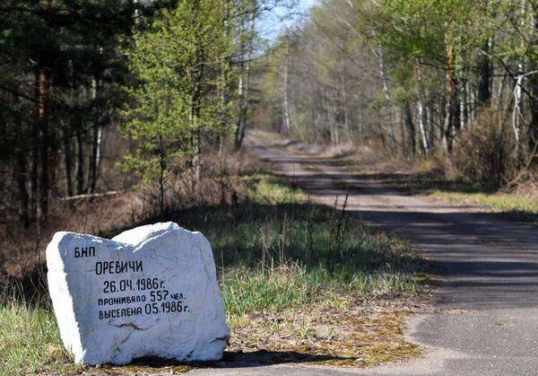В самую в доаварийные годы населенную (более 500человек) деревню Оревичи приехало всего четыре машины - Sputnik Беларусь