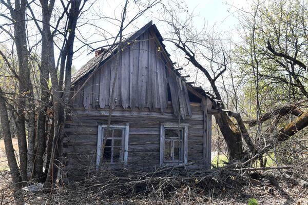 Теперь оставшиеся в живых дома в деревне выглядят так - Sputnik Беларусь