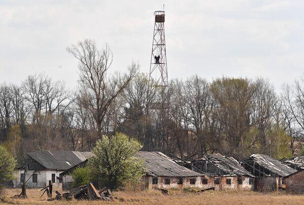 Наблюдательная вышка в деревне Красносельское, отсюда можно легко увидеть реактор - населенный пункт находится в 8 километров от ЧАЭС - Sputnik Беларусь
