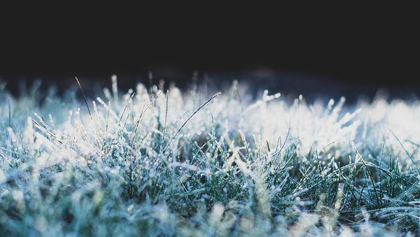 Іней на траве, архіўнае фота - Sputnik Беларусь