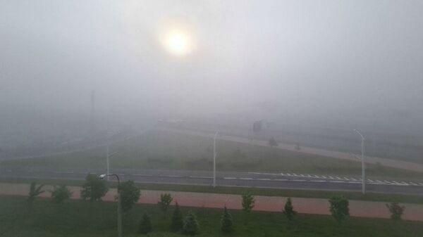 Туман в Минске - Sputnik Беларусь