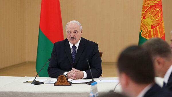 Лукашенко: и в коровники будем ходить, и свиноматок будем смотреть - Sputnik Беларусь