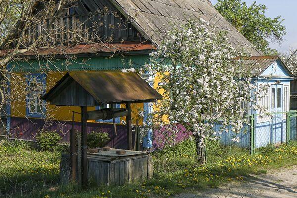 Не только из Беларуси, но и из многих стран зарубежья сюда приезжают посмотреть, как закликают весну на Полесье или проводят обряд Женитьбы Комина осенью. - Sputnik Беларусь