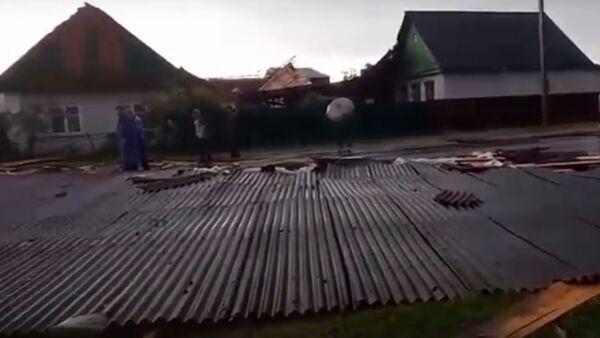 Упавшие деревья и сорванные крыши: последствия грозы в Рогачеве - Sputnik Беларусь
