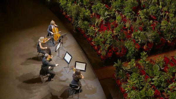 Для почтенной публики: струнный квартет дал концерт для растений - Sputnik Беларусь