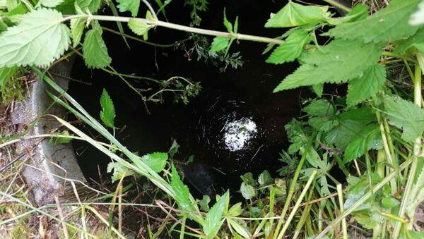 Пенсионер в Могилеве пошел в лес и упал в колодец - Sputnik Беларусь