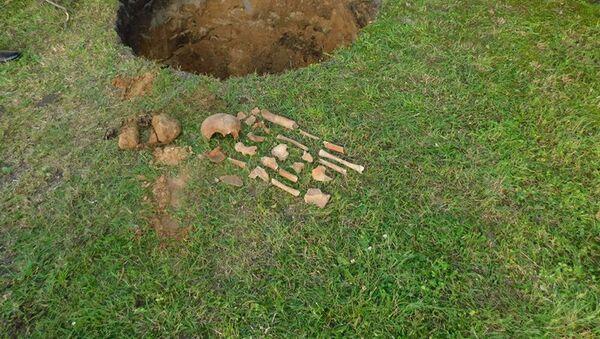 Житель Пружанского района нашел на своем участке человеческие кости - Sputnik Беларусь